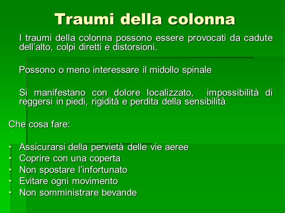 Traumi della colonna I traumi della colonna possono essere provocati da cadute dell'alto, colpi diretti e distorsioni.