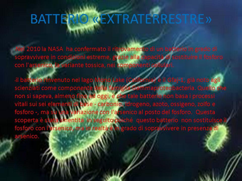 BATTERIO «EXTRATERRESTRE»
