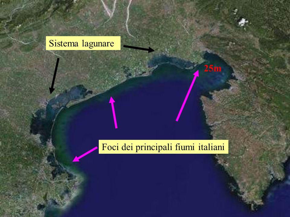 Sistema lagunare 25m Foci dei principali fiumi italiani