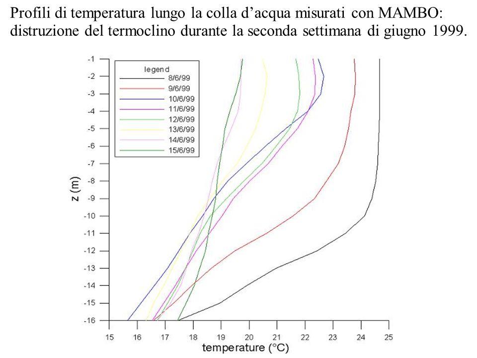 Profili di temperatura lungo la colla d'acqua misurati con MAMBO: