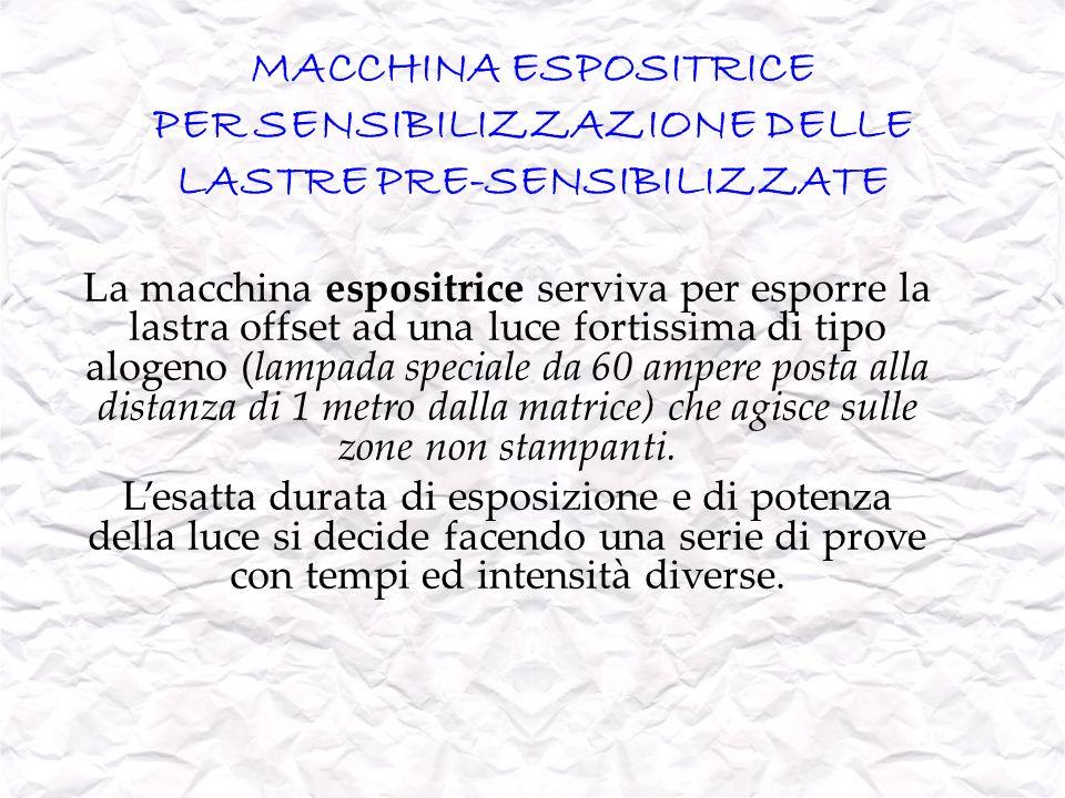 MACCHINA ESPOSITRICE PER SENSIBILIZZAZIONE DELLE LASTRE PRE-SENSIBILIZZATE