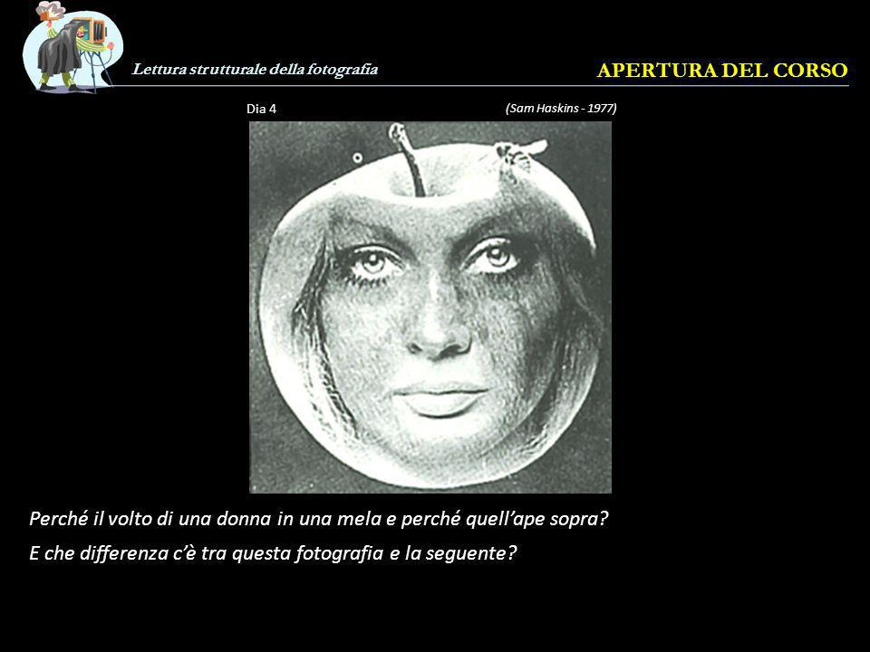 Perché il volto di una donna in una mela e perché quell'ape sopra