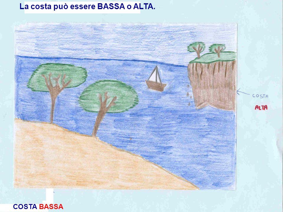 La costa può essere BASSA o ALTA.