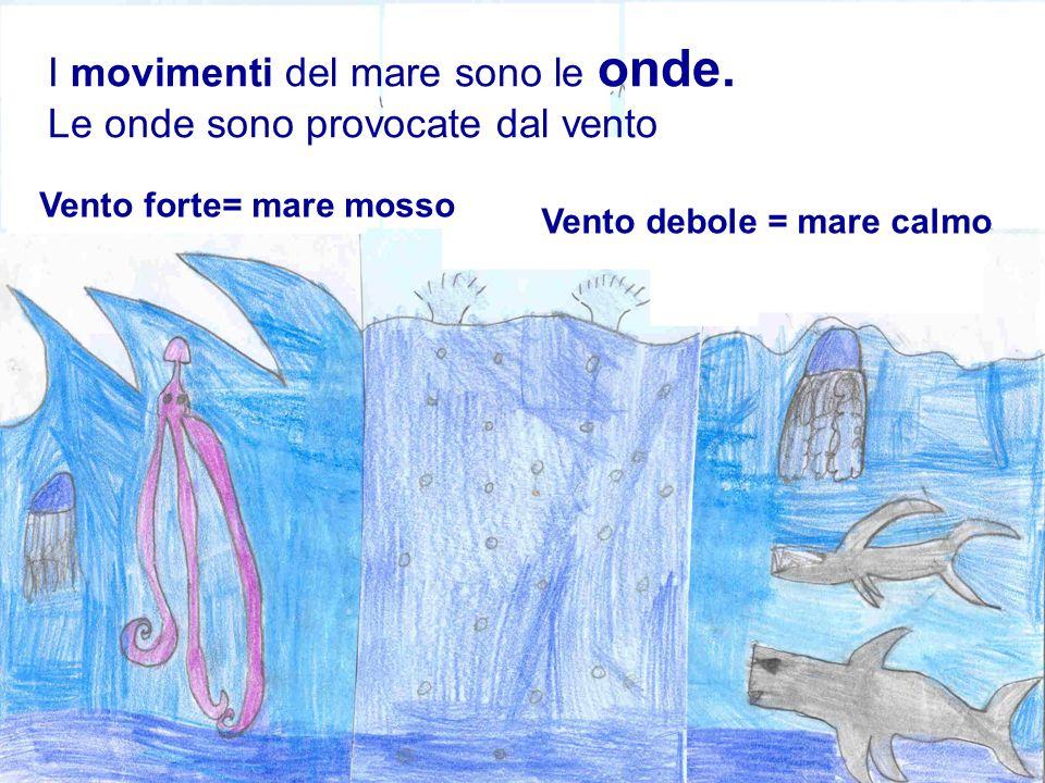 I movimenti del mare sono le onde. Le onde sono provocate dal vento