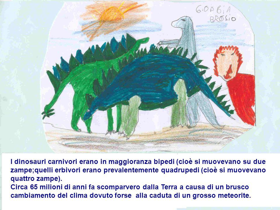 I dinosauri carnivori erano in maggioranza bipedi (cioè si muovevano su due zampe;quelli erbivori erano prevalentemente quadrupedi (cioè si muovevano quattro zampe).
