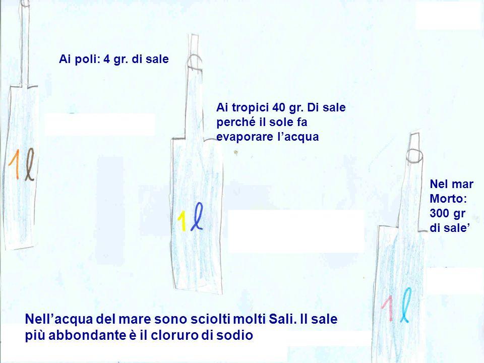 Ai poli: 4 gr. di sale Ai tropici 40 gr. Di sale perché il sole fa evaporare l'acqua. Nel mar Morto: 300 gr di sale'