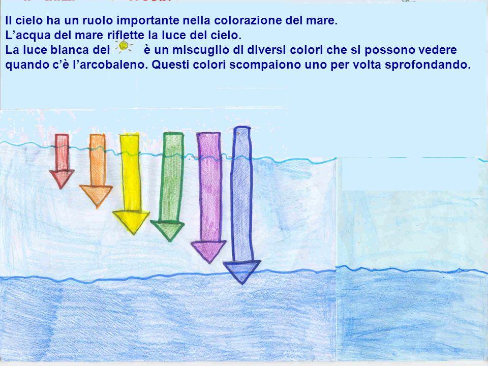 Il cielo ha un ruolo importante nella colorazione del mare.