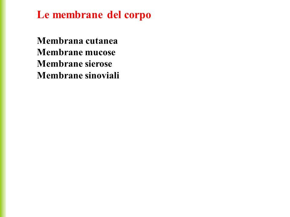 Le membrane del corpo Membrana cutanea Membrane mucose