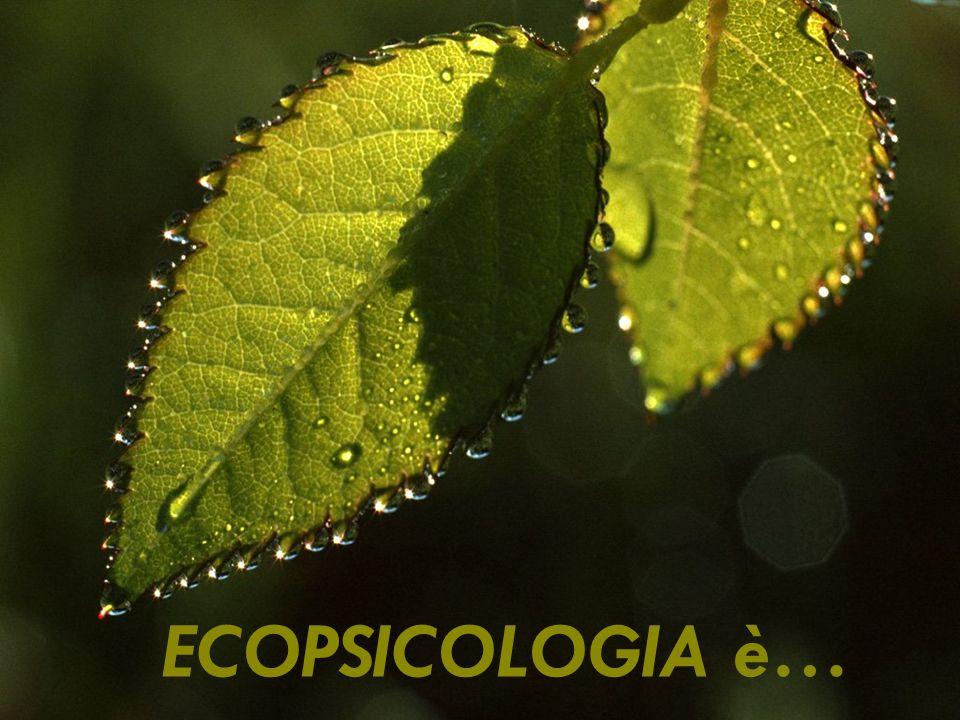 ECOPSICOLOGIA è…