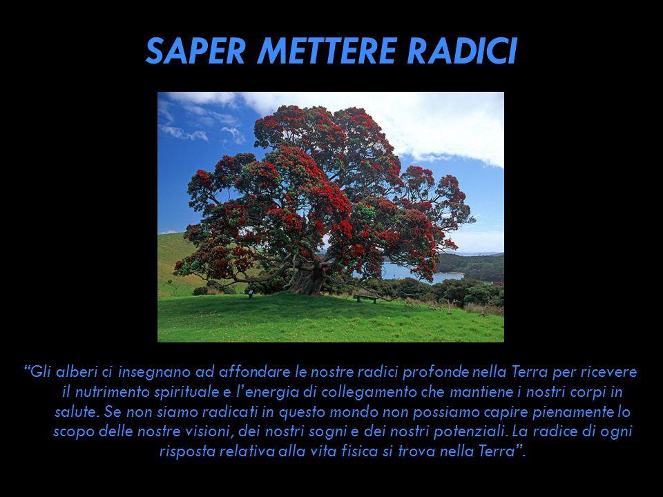 SAPER METTERE RADICI