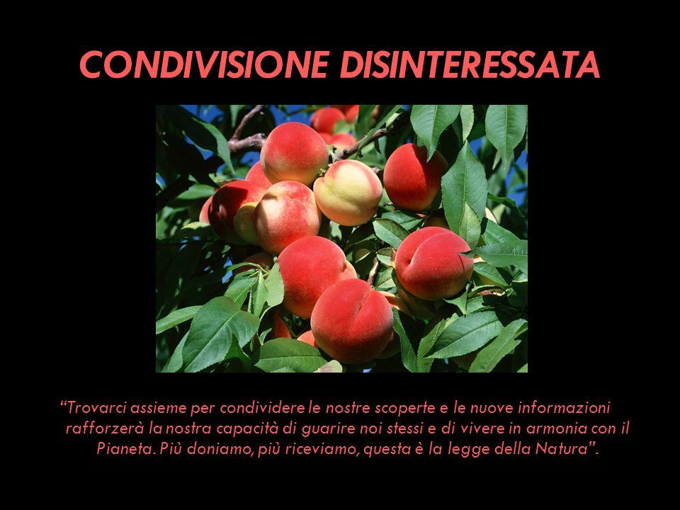 CONDIVISIONE DISINTERESSATA
