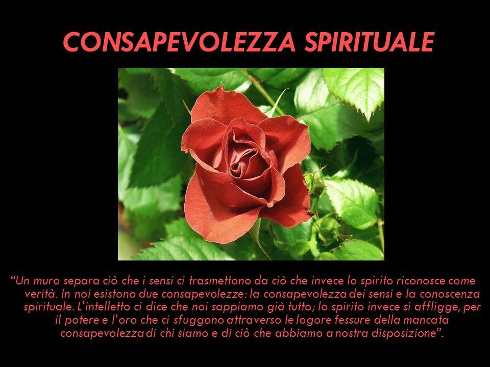 CONSAPEVOLEZZA SPIRITUALE