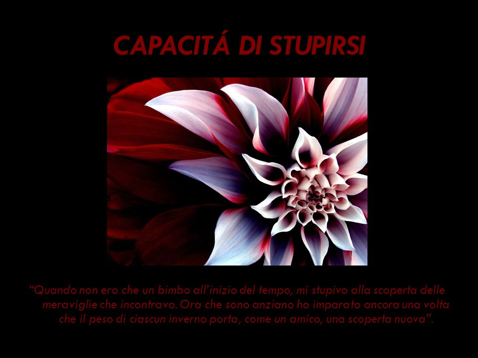 CAPACITÁ DI STUPIRSI
