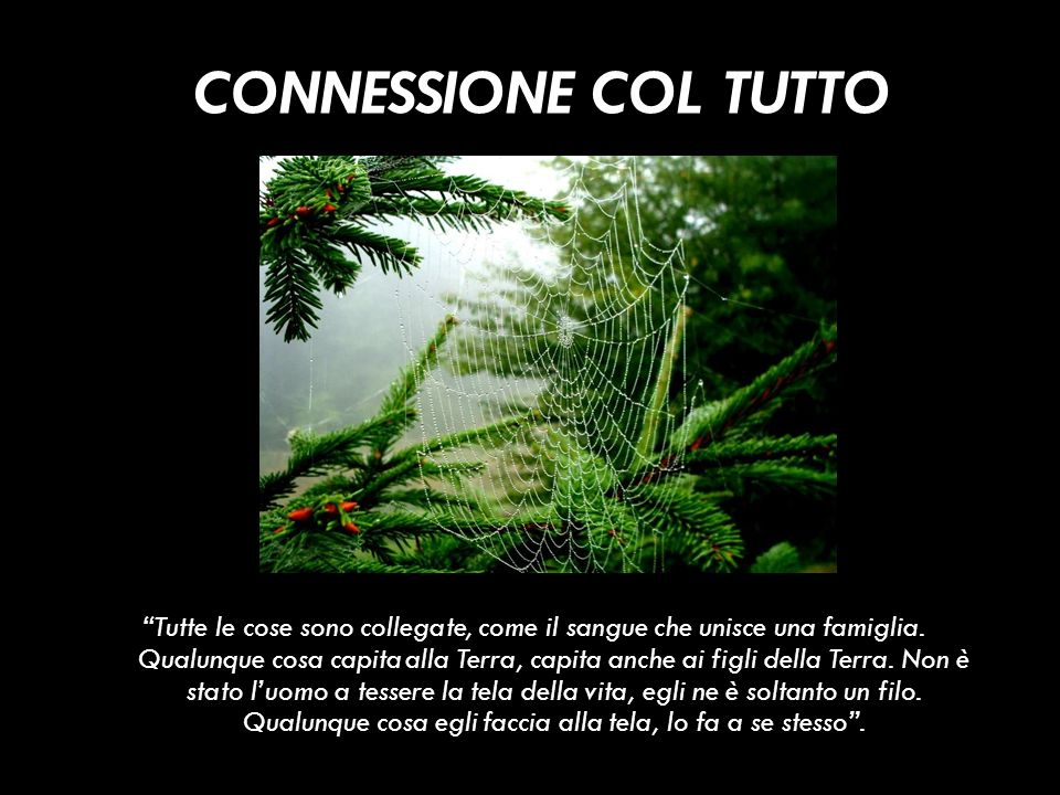 CONNESSIONE COL TUTTO