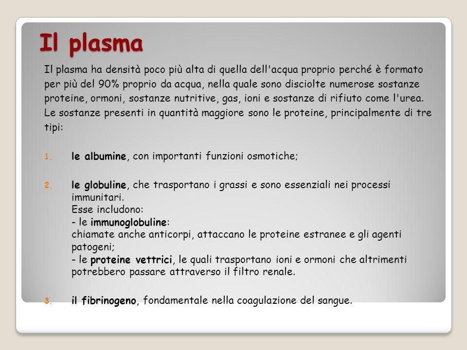 Il plasma Il plasma ha densità poco più alta di quella dell acqua proprio perché è formato.