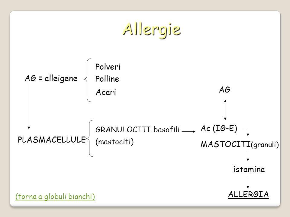 Allergie Polveri Polline AG = alleigene Acari AG Ac (IG-E)