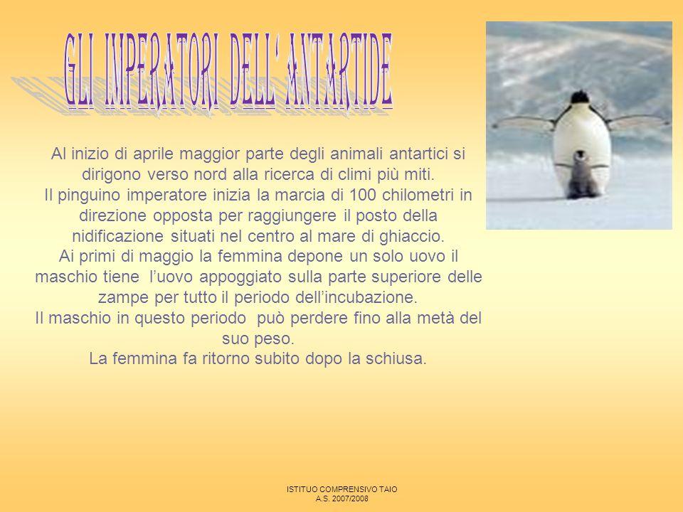 Gli imperatori dell' Antartide