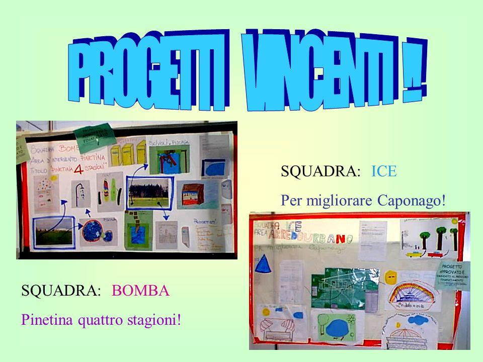 PROGETTI VINCENTI !! SQUADRA: ICE Per migliorare Caponago!