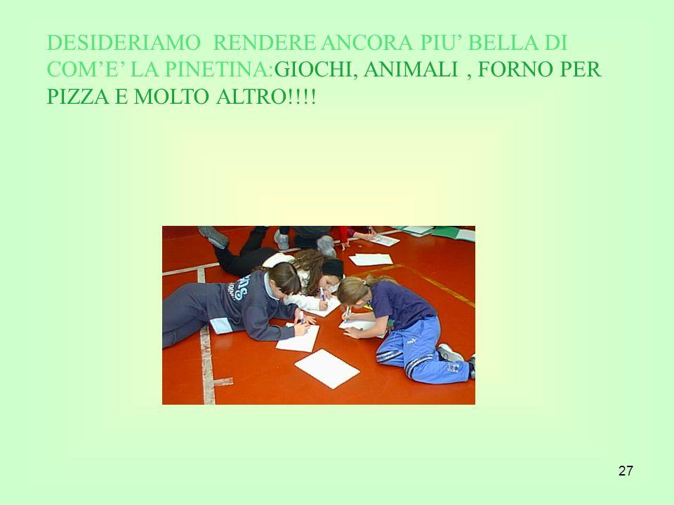 DESIDERIAMO RENDERE ANCORA PIU' BELLA DI COM'E' LA PINETINA:GIOCHI, ANIMALI , FORNO PER PIZZA E MOLTO ALTRO!!!!