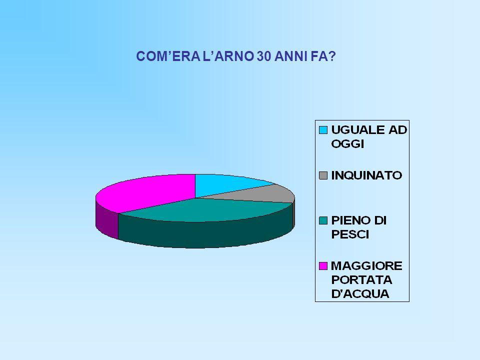 COM'ERA L'ARNO 30 ANNI FA