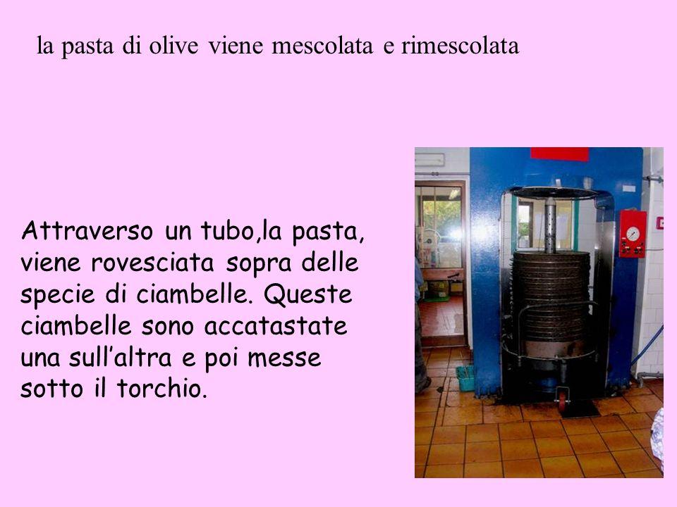 la pasta di olive viene mescolata e rimescolata
