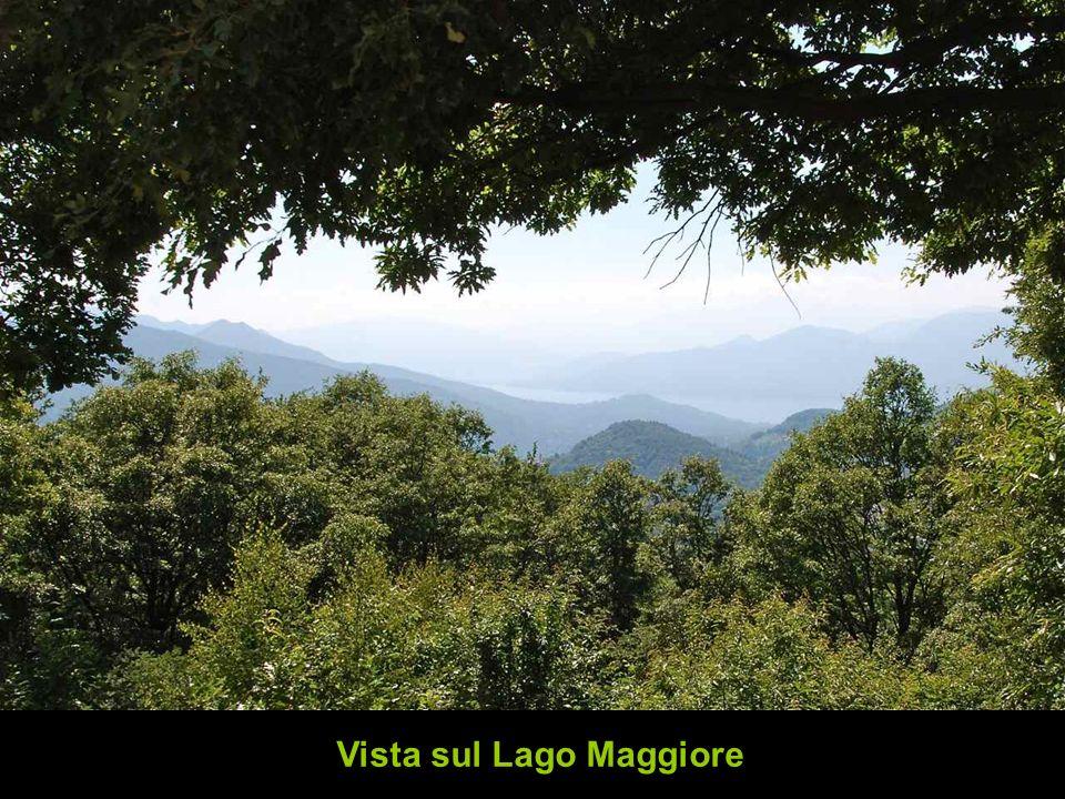 Vista sul Lago Maggiore