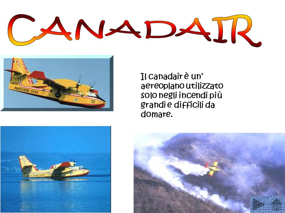 CANADAIR Il canadair è un' aereoplano utilizzato solo negli incendi più grandi e difficili da domare.