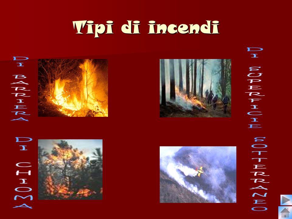 Tipi di incendi DI BARRIERA DI SUPERFICIE DI CHIOMA SOTTERRANEO
