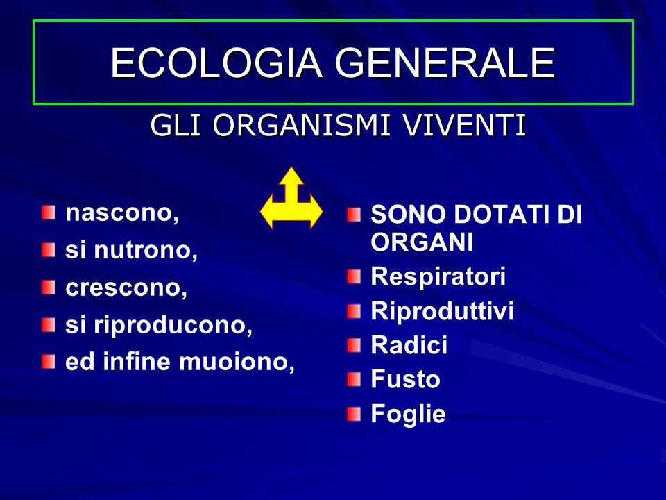 ECOLOGIA GENERALE GLI ORGANISMI VIVENTI nascono, SONO DOTATI DI ORGANI