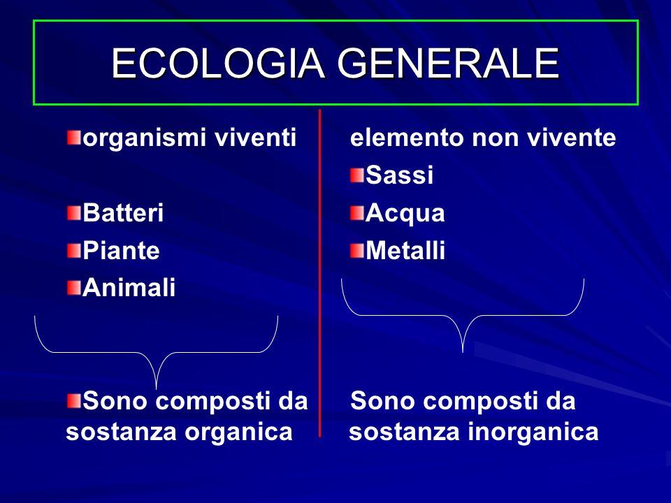 ECOLOGIA GENERALE organismi viventi Batteri Piante Animali