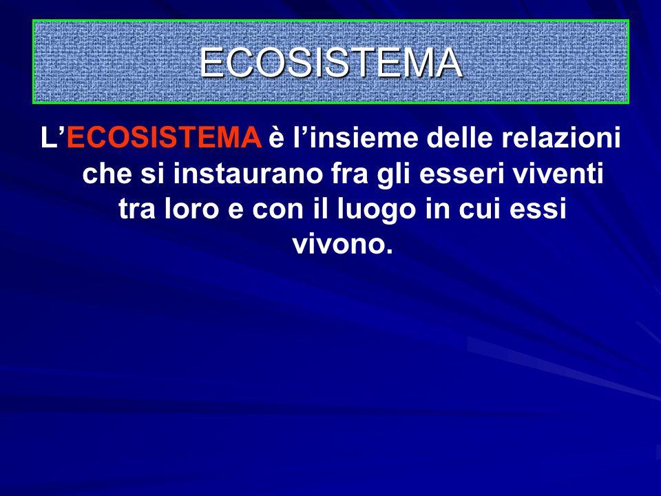 ECOSISTEMA L'ECOSISTEMA è l'insieme delle relazioni che si instaurano fra gli esseri viventi tra loro e con il luogo in cui essi vivono.