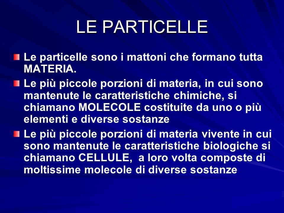 LE PARTICELLE Le particelle sono i mattoni che formano tutta MATERIA.