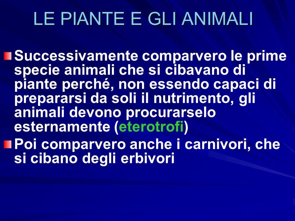 LE PIANTE E GLI ANIMALI