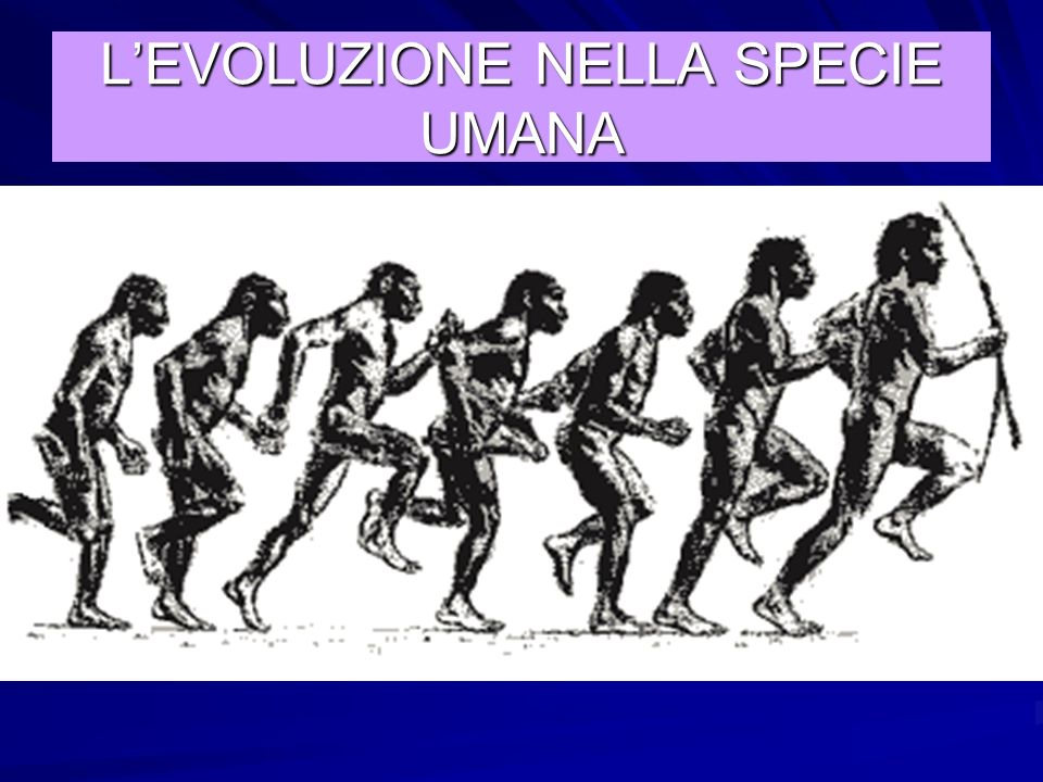 L'EVOLUZIONE NELLA SPECIE UMANA