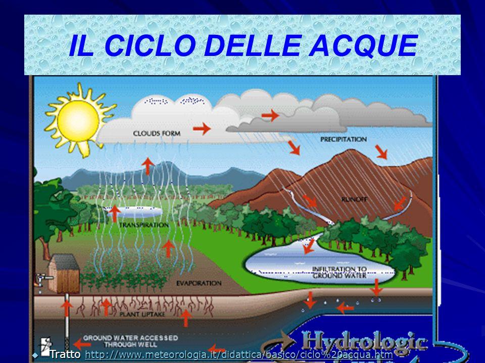 IL CICLO DELLE ACQUE Tratto http://www.meteorologia.it/didattica/basico/ciclo%20acqua.htm