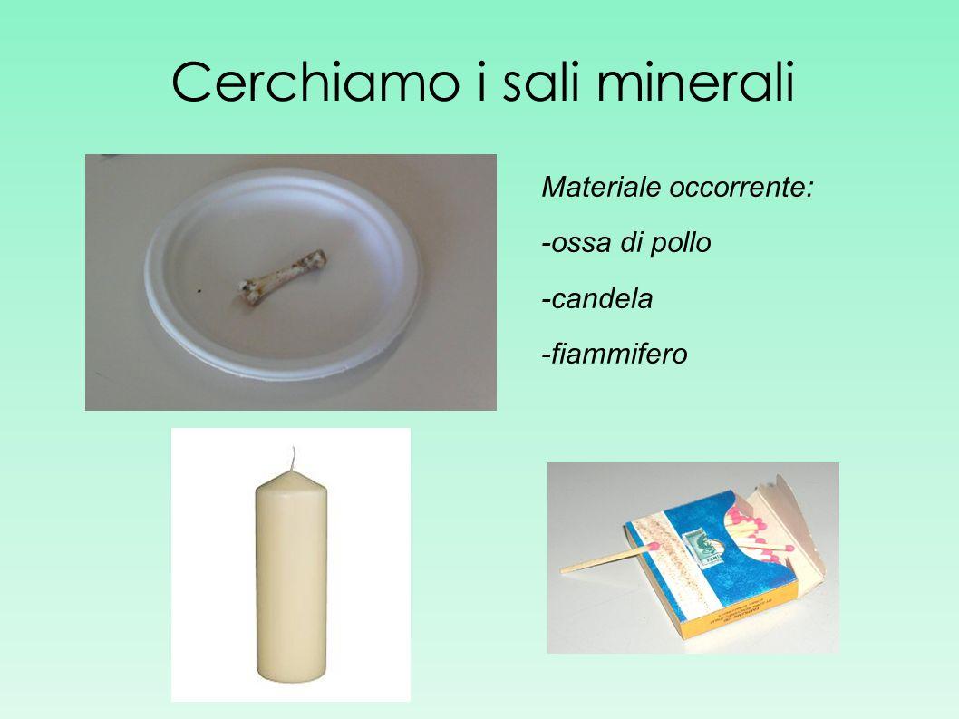 Cerchiamo i sali minerali