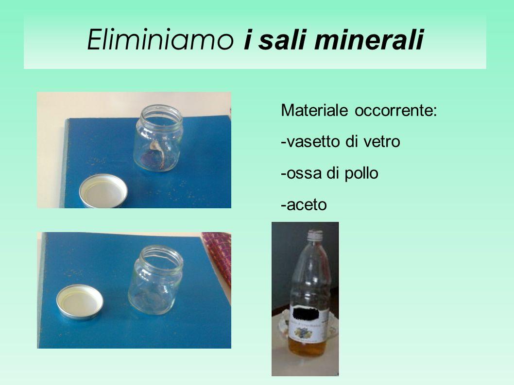 Eliminiamo i sali minerali