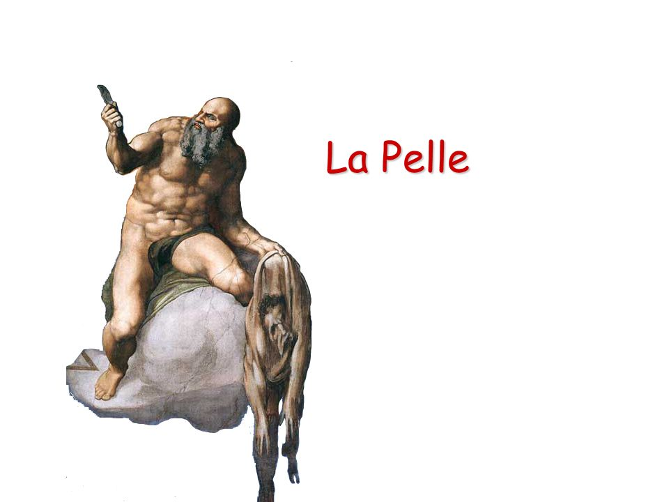 La Pelle