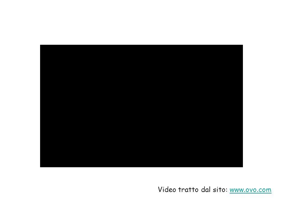 Video tratto dal sito: www.ovo.com