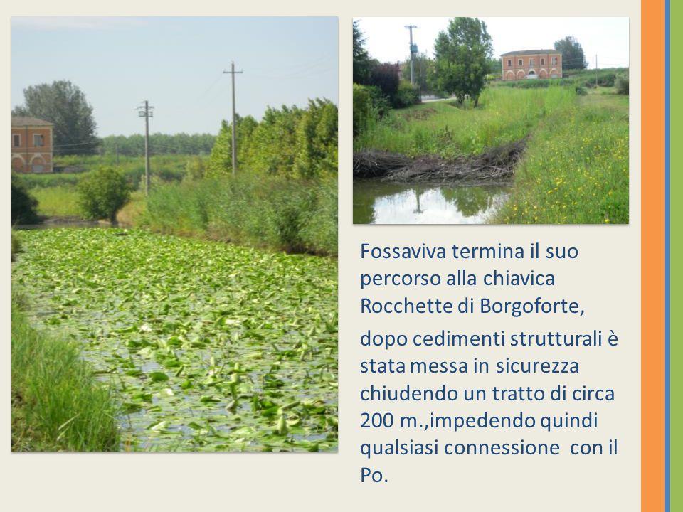 Fossaviva termina il suo percorso alla chiavica Rocchette di Borgoforte,