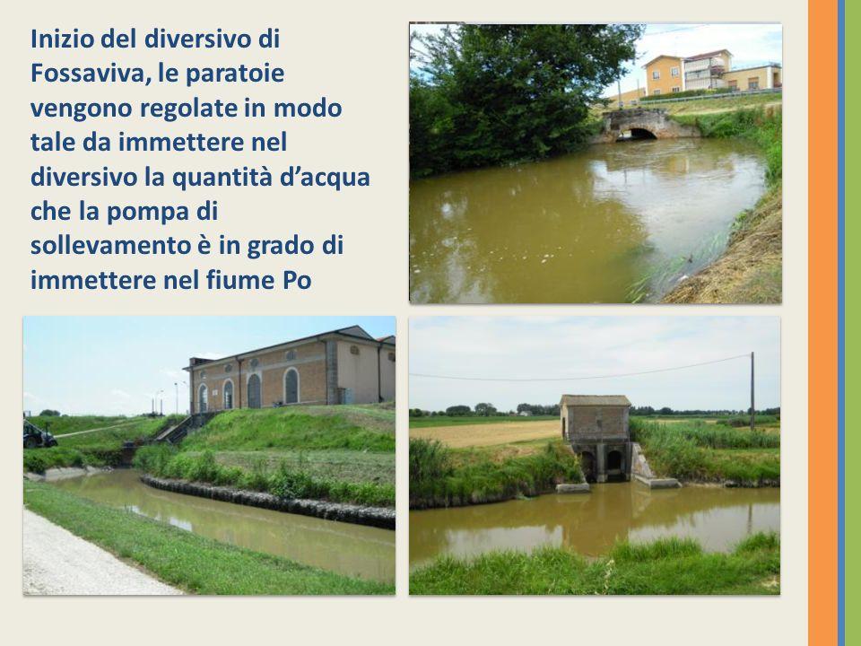 Inizio del diversivo di Fossaviva, le paratoie vengono regolate in modo tale da immettere nel diversivo la quantità d'acqua che la pompa di sollevamento è in grado di immettere nel fiume Po