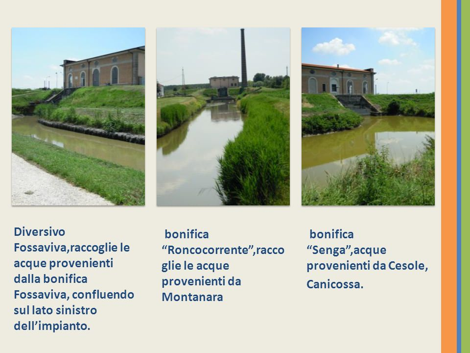 Diversivo Fossaviva,raccoglie le acque provenienti dalla bonifica Fossaviva, confluendo sul lato sinistro dell'impianto.