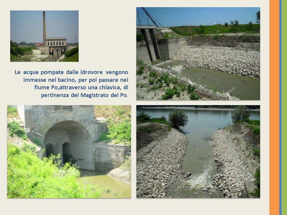Le acque pompate dalle idrovore vengono immesse nel bacino, per poi passare nel fiume Po,attraverso una chiavica, di pertinenza del Magistrato del Po.