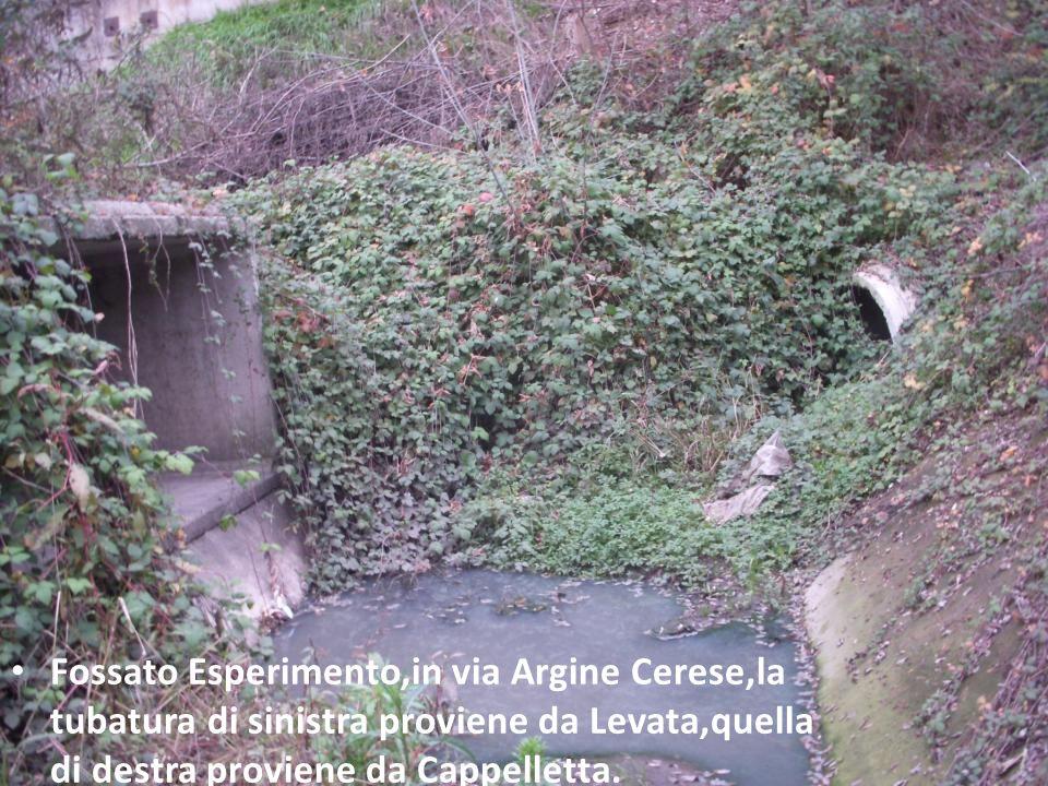 Fossato Esperimento,in via Argine Cerese,la tubatura di sinistra proviene da Levata,quella di destra proviene da Cappelletta.