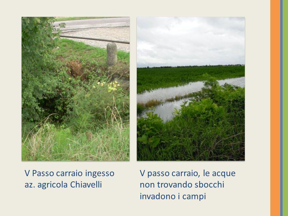V Passo carraio ingesso az. agricola Chiavelli