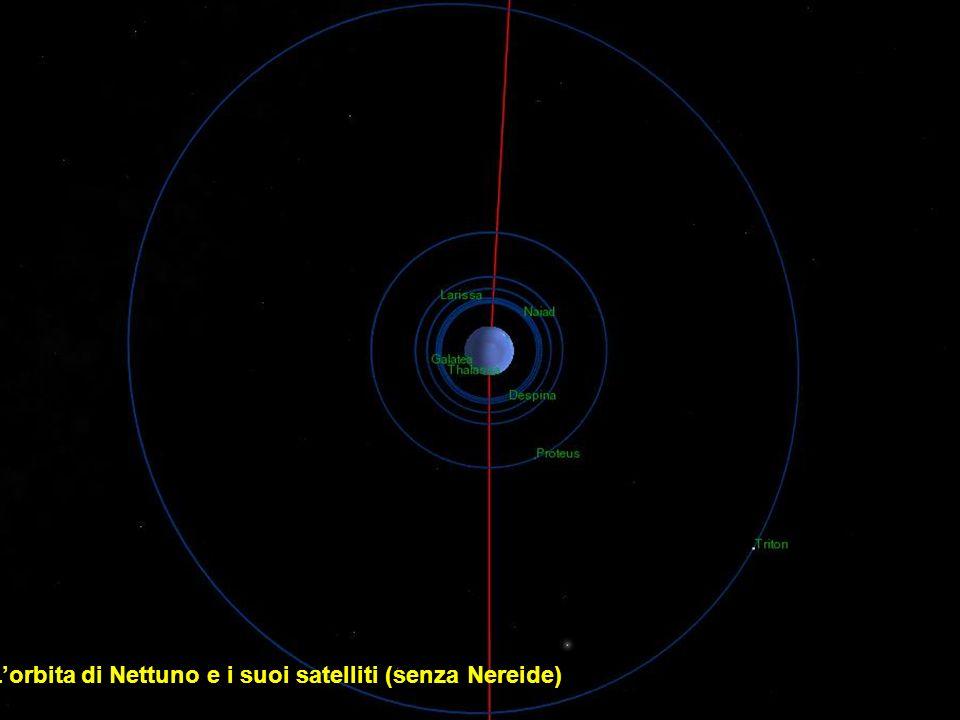 L'orbita di Nettuno e i suoi satelliti (senza Nereide)