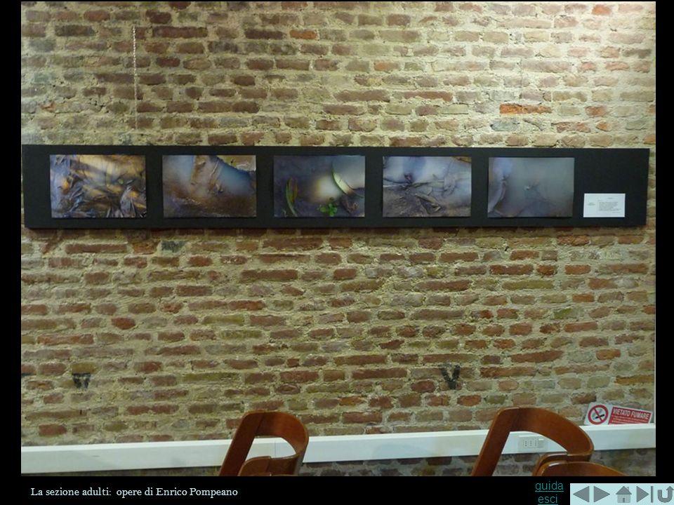 La sezione adulti: opere di Enrico Pompeano