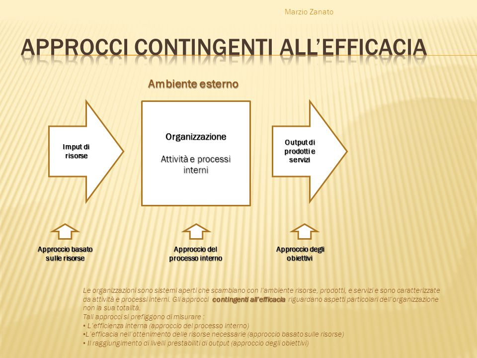 Approcci contingenti all'efficacia