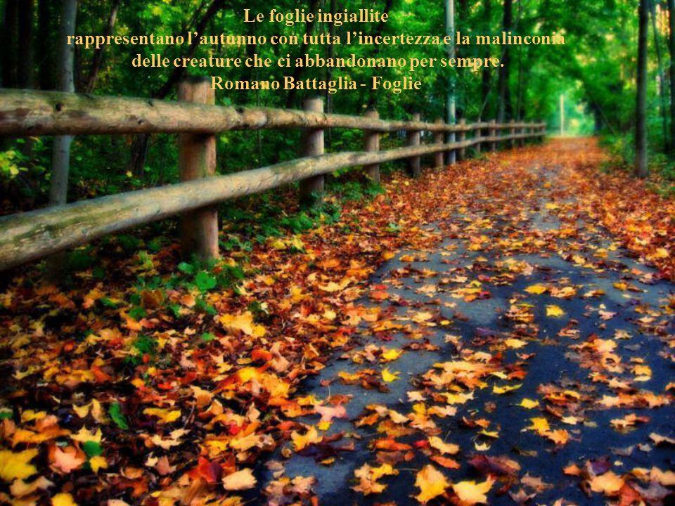 rappresentano l'autunno con tutta l'incertezza e la malinconia