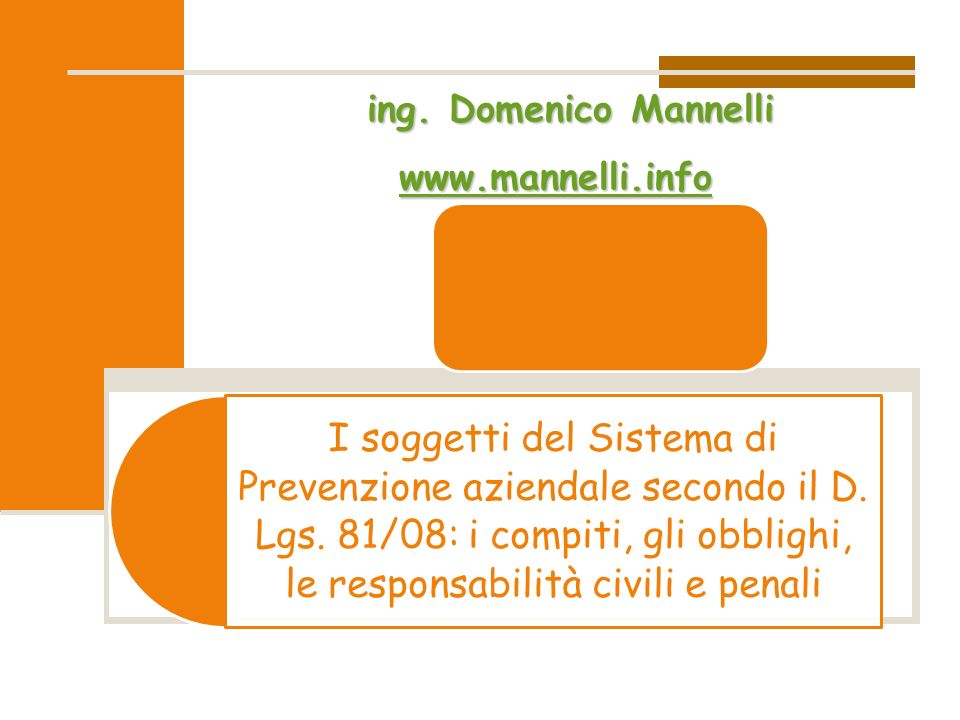 ing. Domenico Mannelli www.mannelli.info.